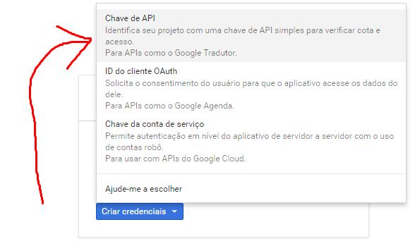 """11º Selecione a opção """"Chave de API"""""""