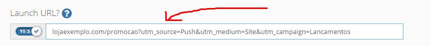 """adicione parâmetros de tracking em sua URL no campo """"Launch URL?"""""""